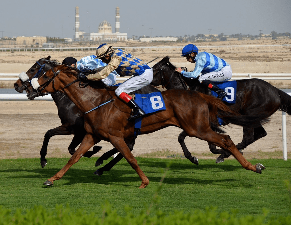 RMG FACILITATE BAHRAIN INTERNATIONAL TROPHY COVERAGE IN 123 COUNTRIES